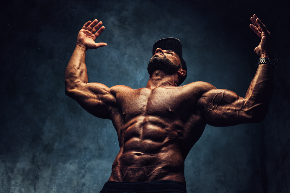 Bodybuilding Charts - Body Building Muscle Charts - How Do I Measure Up?